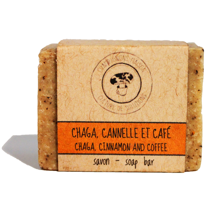 Chaga Cinnamon Coffee Squared Soap